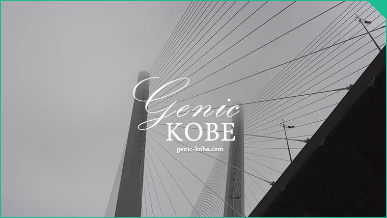 六アイとポーアイを繋ぐ巨大な橋