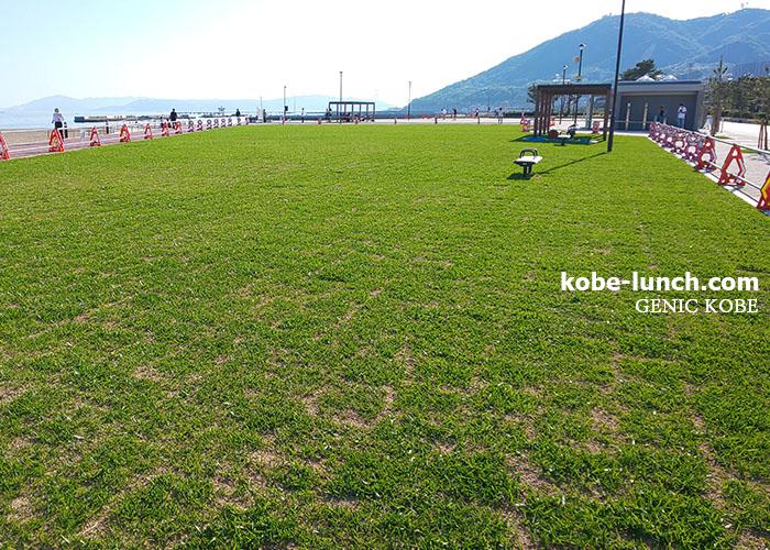 須磨海岸に芝生広場が完成へ