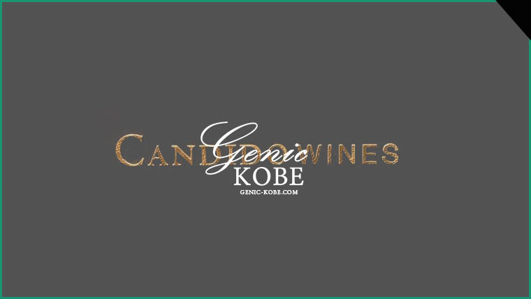 Candido Wines 神戸三宮
