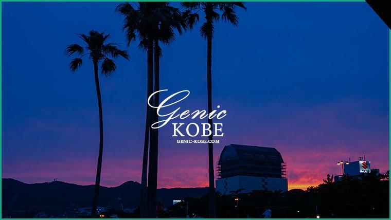 【須磨海岸の夕焼けが綺麗でした】願いの椰子の木【夕陽】